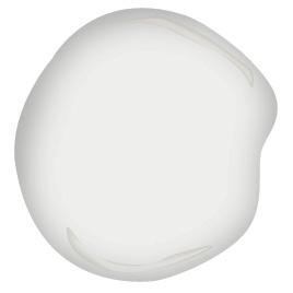 bonifant white