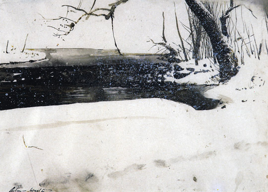 Andrew Wyeth Snow