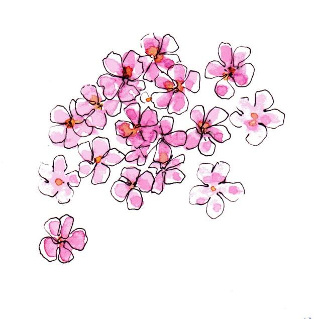 PvE Design:JMcL-pink flo939